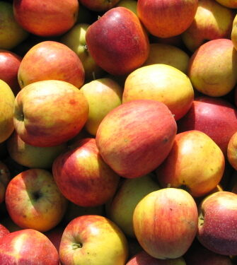 Wenn Du jemandem einen Apfel verkaufen willst, wecke in ihm die Vorfreude auf den Genuss!